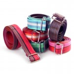recyclable plastic belts